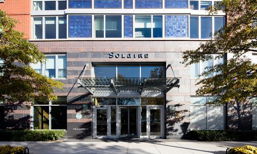 The Solaire